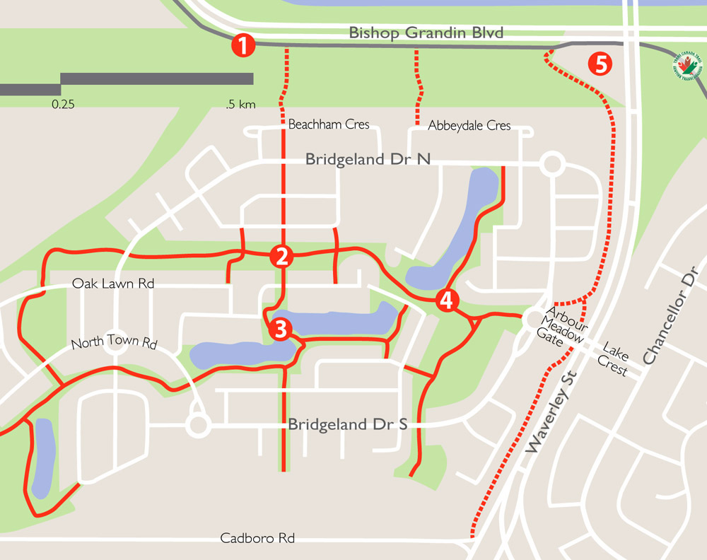 map-image-BridgewaterForestTrails